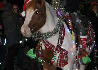 Christmas-Ponies-2