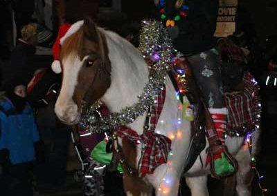 Christmas-Ponies